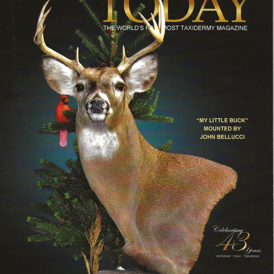 Taxidermy Today Cover Jan 2021